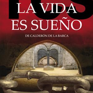 book La Tormentosa Busquedad del